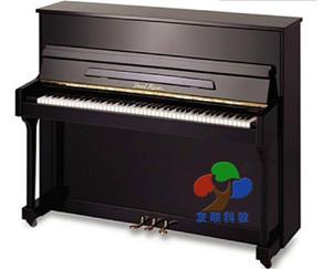 U00001钢琴