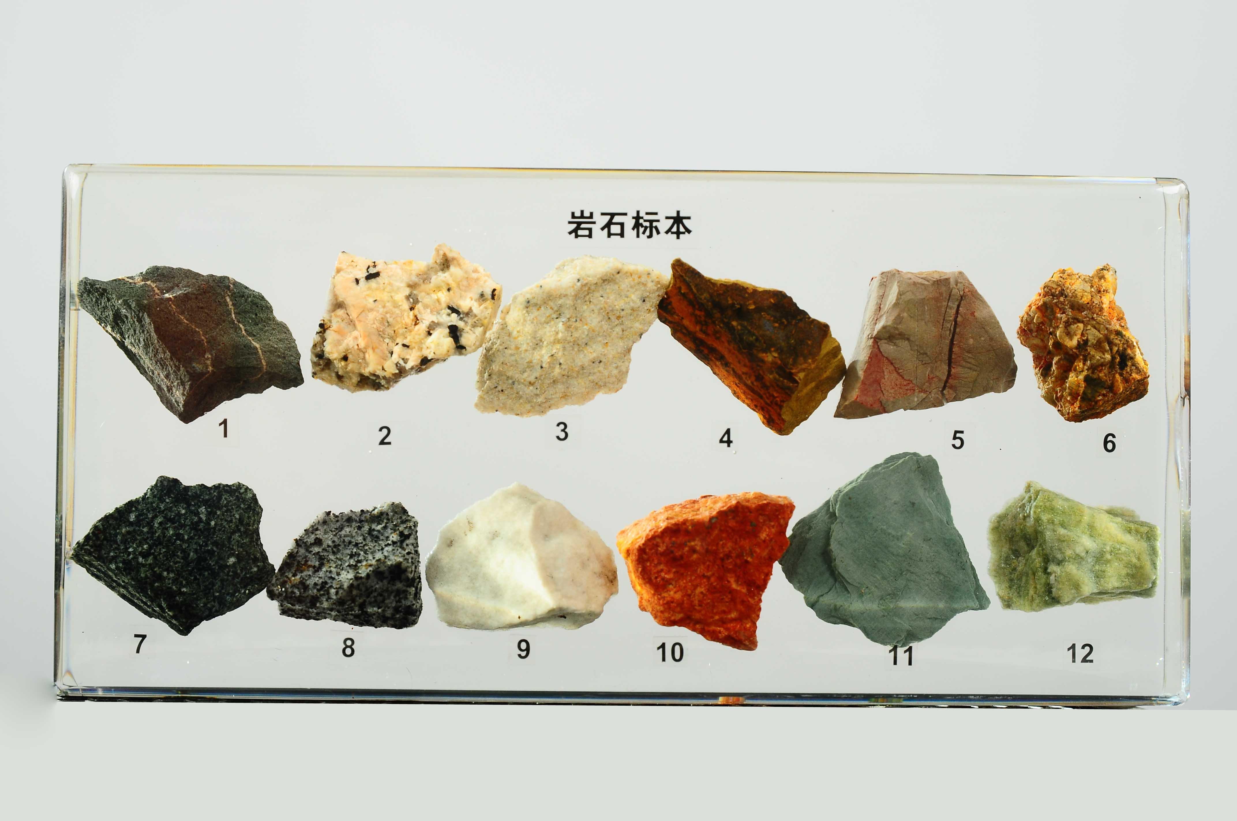 3006岩石标本(包埋)